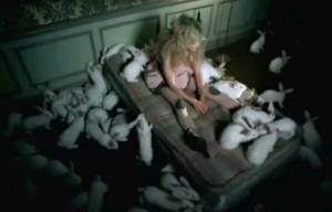 02 Sexed up Rabbits_2