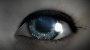 Ascot Eye